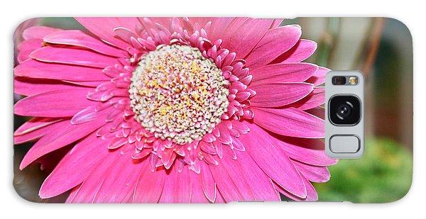 Pink Gerbera Daisy Galaxy Case by Ann Murphy