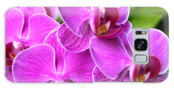 Pink Orchids B Galaxy Case