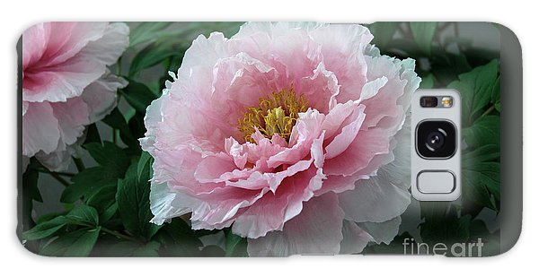 Pink Peony Flowers Series 2 Galaxy Case
