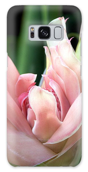 Pink Torch Ginger Galaxy Case