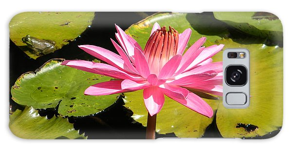 Pink Water Lilly With Frog Galaxy Case