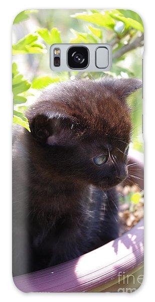 Planted Kitten Galaxy Case by Tannis  Baldwin