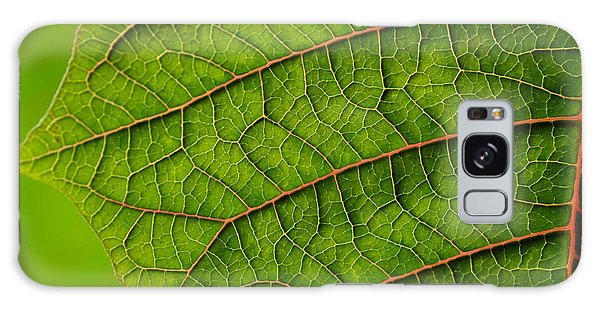 Poinsettia Leaf I Galaxy Case