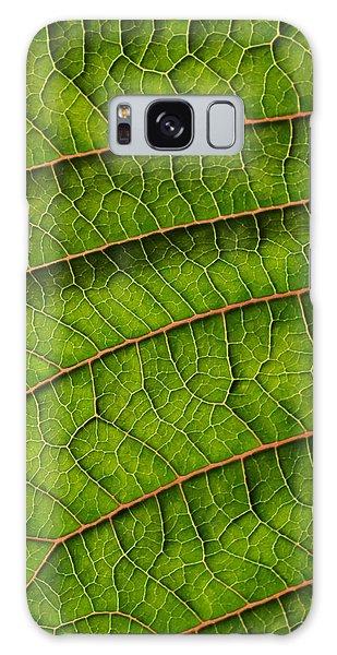 Poinsettia Leaf II Galaxy Case
