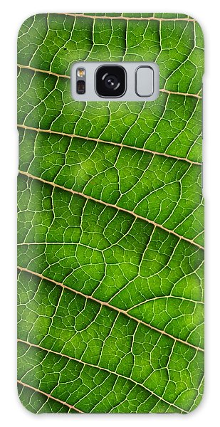 Poinsettia Leaf IIi Galaxy Case