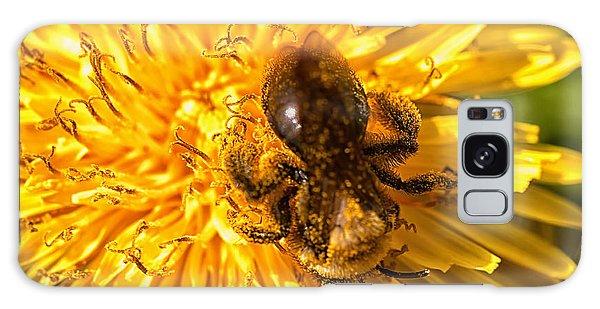 Pollinating Galaxy Case