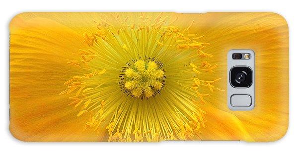 Poppy 2 Galaxy Case