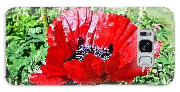 Poppy Galaxy Case by Nick Kloepping