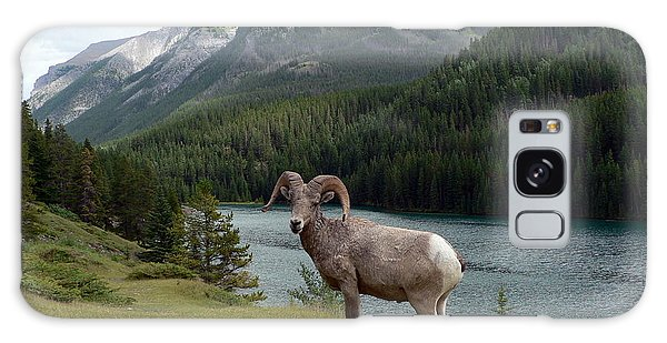 Portrait Of A Bighorn Sheep At Lake Minnewanka  Galaxy Case