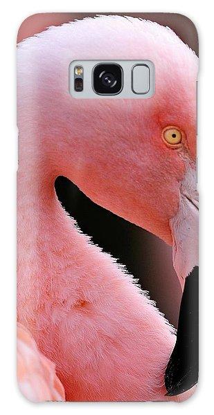 Portrait Of A Flamingo Galaxy Case