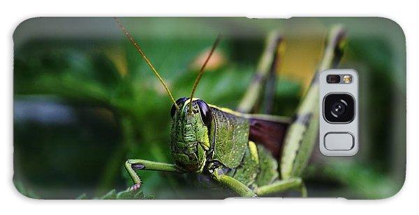 Portrait Of A Grasshopper Galaxy Case