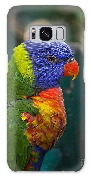 Posing Rainbow Lorikeet. Galaxy Case