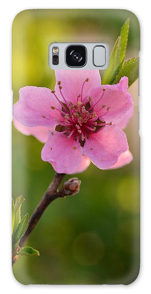 Pretty Pink Peach Galaxy Case