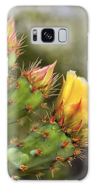 Prickly Pear Flowers Galaxy Case