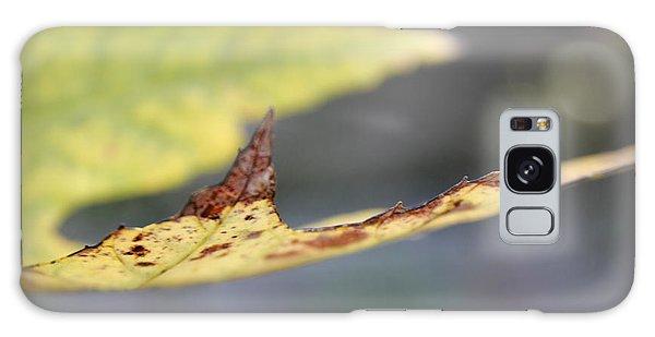 Profile Of A Leaf Galaxy Case
