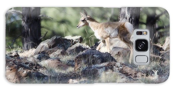 Pronghorn Antelope Fawn Galaxy Case