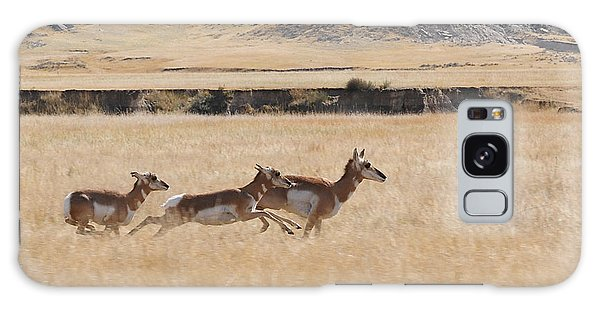 Pronghorn Antelopes On The Run Galaxy Case by Art Whitton