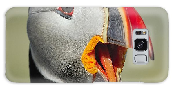 Puffin Portrait Galaxy Case