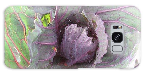 Purple Cabbage  Galaxy Case
