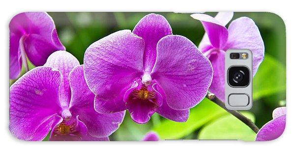 Purple Flowers In A Bunch Galaxy Case