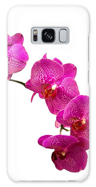 Purple Orchid On White Galaxy Case