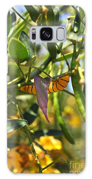 Purple Pink Green Chrysalis  Galaxy Case