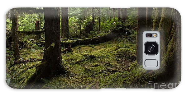 Outdoors Galaxy Case - Quietly Alive by Mike Reid