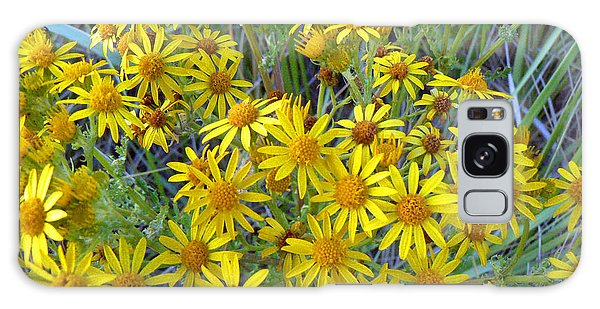 Ragwort - Tansy Galaxy Case by Pamela Patch