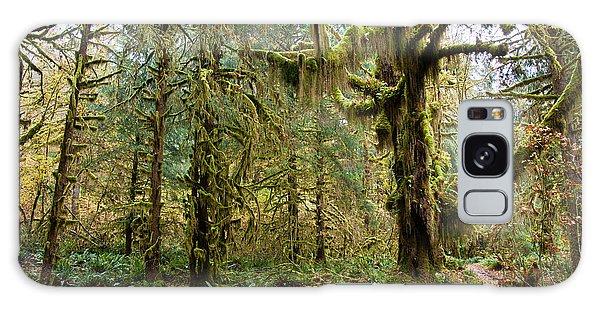 Rain Forest In Fall Galaxy Case