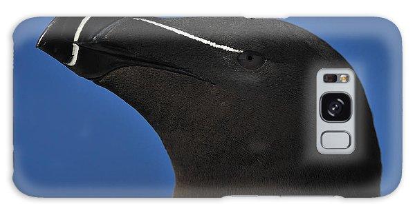 Razorbill Portrait Galaxy Case