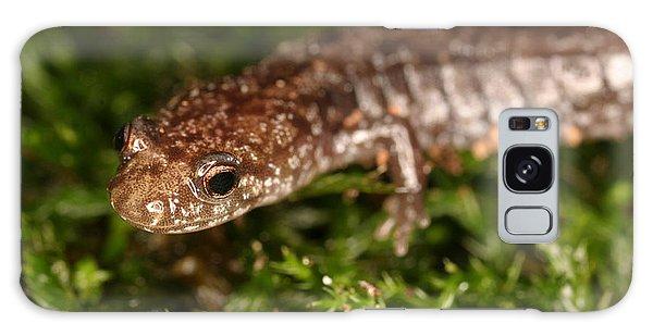 Red-backed Salamander Galaxy Case