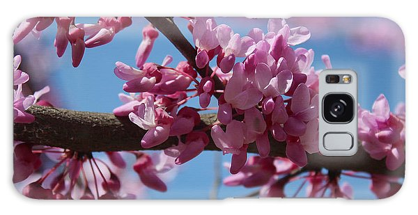 Red Bud In Bloom Galaxy Case by Kathleen Holley