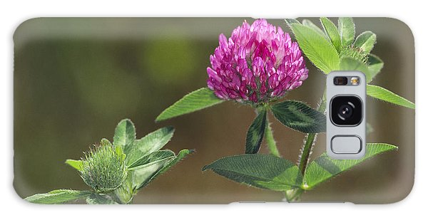 Red Clover Blossom Galaxy Case