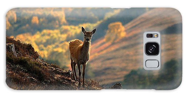 Red Deer Calf Galaxy Case