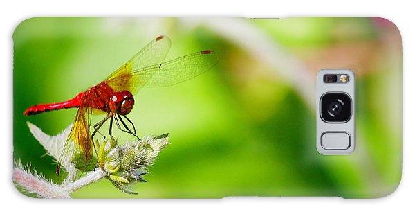 Red Dragon Fly Galaxy Case