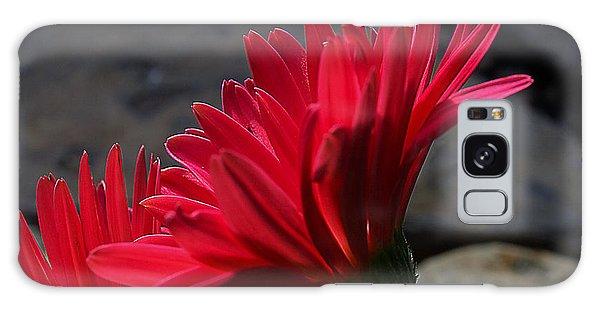 Red English Daisy Galaxy Case by Joe Schofield
