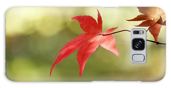 Red Leaf. Galaxy Case by Clare Bambers