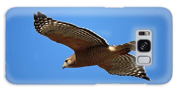 Red Shouldered Hawk In Flight Galaxy Case