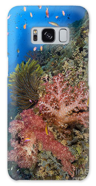 Feather Stars Galaxy Case - Red Soft Coral With Crinoid And Anthias by Steve Jones