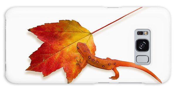 Newts Galaxy Case - Red Spotted Newt by Ron Jones