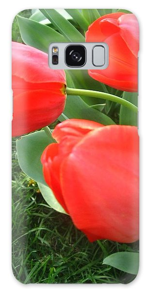 Red Spring Tulips Galaxy Case