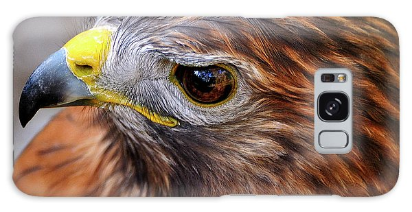 Red-tailed Hawk Close Up Galaxy Case