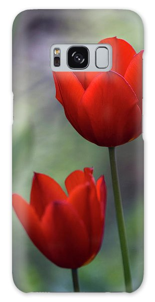 Red Tulips Galaxy Case by Raffaella Lunelli