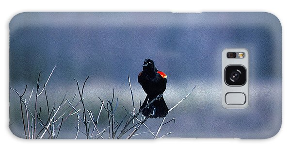 Red-wings Morning Call 10o Galaxy Case by Gerry Gantt