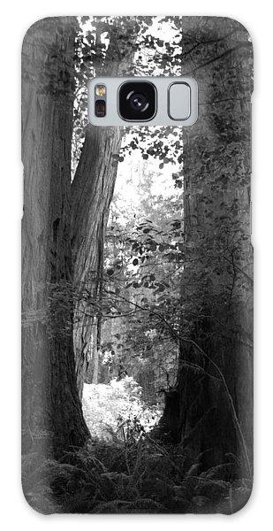 Redwood Pair Galaxy Case