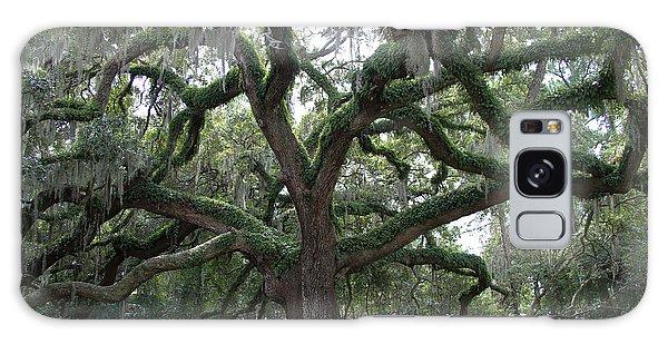 Resurrection Oak Galaxy Case by Dodie Ulery