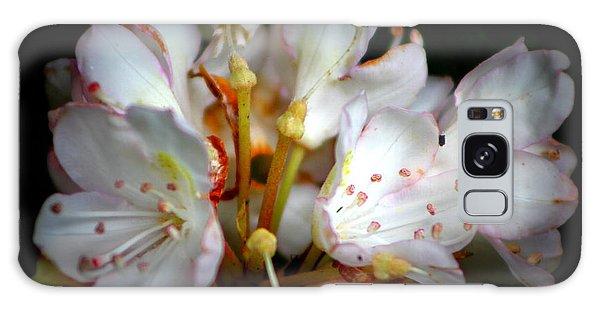 Rhododendron Explosion Galaxy Case