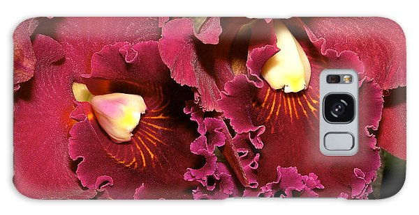 Rich Burgundy Orchids Galaxy Case by Phyllis Denton