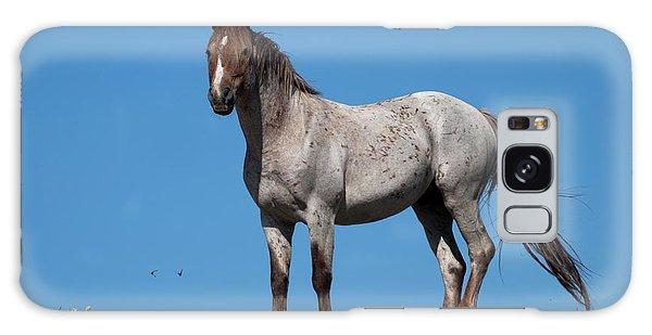 Ridgetop Mustang Galaxy Case