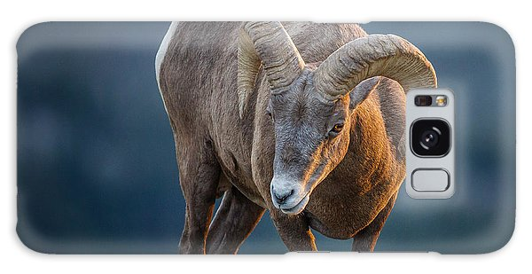 Rocky Mountain Big Horn Ram Galaxy Case